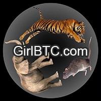 GirlBTC