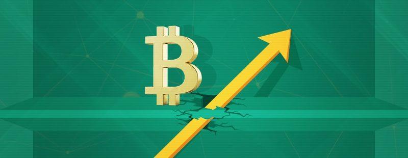 Bitcoin Price Flux