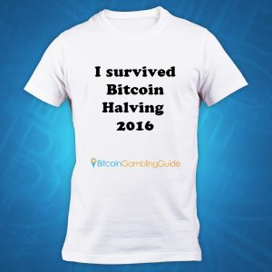 I Survived Bitcoin Halving 2016