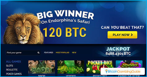 Player wins 120 BTC from Endorphina's Safari slot at BetChain Casino