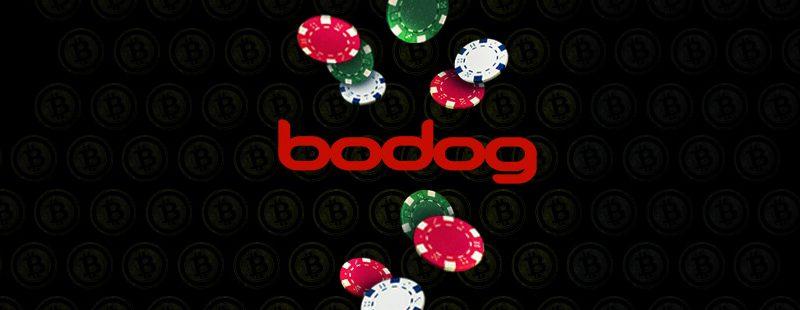 Bodog Seeks Poker Expansion to Latin America