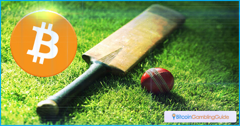 Cricket betting in online sportsbooks
