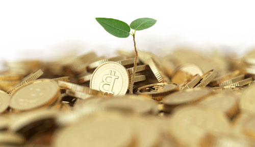 Finding Investment Security by Branching Out to Digital Currencies
