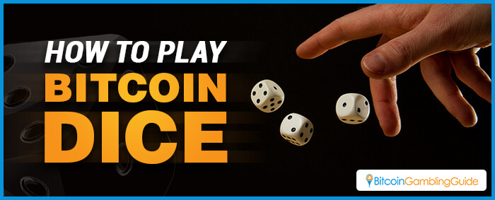 How to Play Bitcoin Dice
